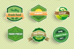 Link toDelicate green food label sticker vector