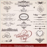 Link toDelicate lace pattern elements vector