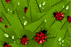 Delicate leaves ladybug vector