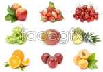 Link toDelicious fruit 2 psd