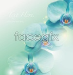 Link toDelicious iris vector
