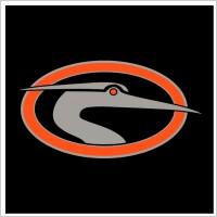 Link toDelmarva shorebirds 1 logo