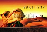 Link toDesert camel culture poster vector graphics
