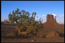 Link toDesert landscape pictures
