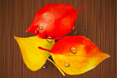 Link toDew of autumn-leaf wood grain background vector