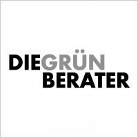 Link toDiegruen berater logo