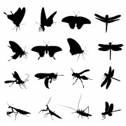 Link toDifferent insect silhouettes creative vector free