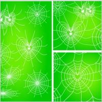 Link toDiverse spider web love vector network