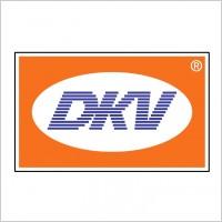 Link toDkv logo