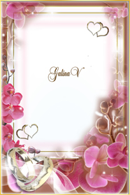 Link toDownload hd picture wedding invitations
