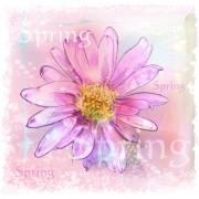 Link toDrawn watercolor flower art background vector set 04 free