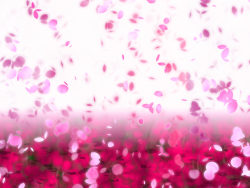 Link toDream petals dancing background high definition pictures