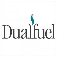 Link toDualfuel logo