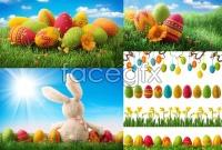 Link toEaster egg hd photo