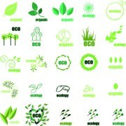 Link toEco green logos design vector 02