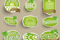 Link toEco organic label vector