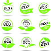 Link toEco with natural logos and labels vector 03 free