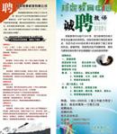 Link toEducation center advertisement psd
