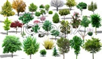Link toEffect picture of green trees psd