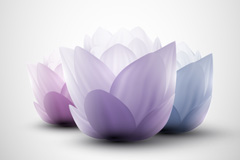 Link toElegant lotus flower background vector