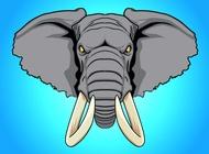 Link toElephant head vector free