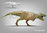 Elevation of t-rex vector