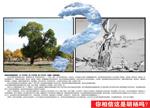 Link toEnvironmental protection brochure psd