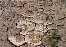 Link toEnvironmental protection lands arid picture crack