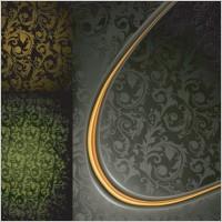 Link toEuropeanstyle elegance gyrosigma vector background