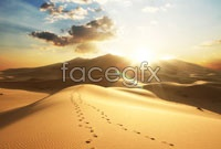 Link toEvening desert trails high definition pictures