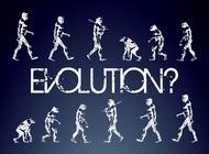 Link toEvolution graphics vector free