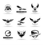 Exquisite eagle logo vector