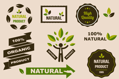 Link toExquisite natural product icon vector