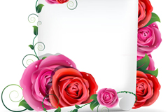 Link toExquisite rose text background vector