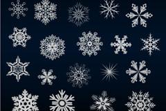 Link toExquisite snowflake design vector