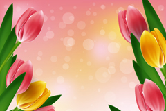 Exquisite tulip vector background
