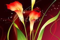 Link toFantasy carnation background vector