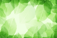Link toFantasy fresh leaves background vector