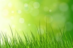 Link toFantasy grass background vector