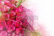 Link toFantasy red rose pictures
