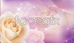 Link toFantasy white roses vector