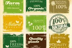 Link toFarm fresh green tag vector