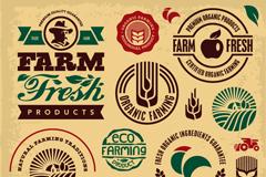 Link toFarm-fresh tag vector
