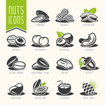 Link toFashion nuts dried fruit vector