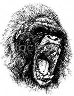 Link toFerocious gorilla vector