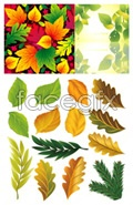 Link toFine leaf vector