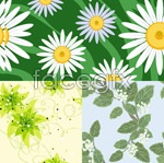 Link toFine plant pattern vector