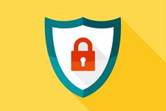 Fine shield and lock the vector diagram