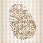 Link toFingerprint vector
