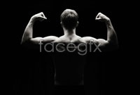 Link toFitness hd picture
